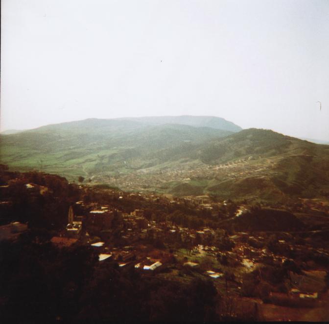 Algérie Février 2011
