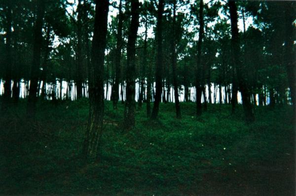 Bretagne 2011